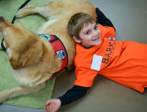 Interaction with Canines Builds Children's Confidence