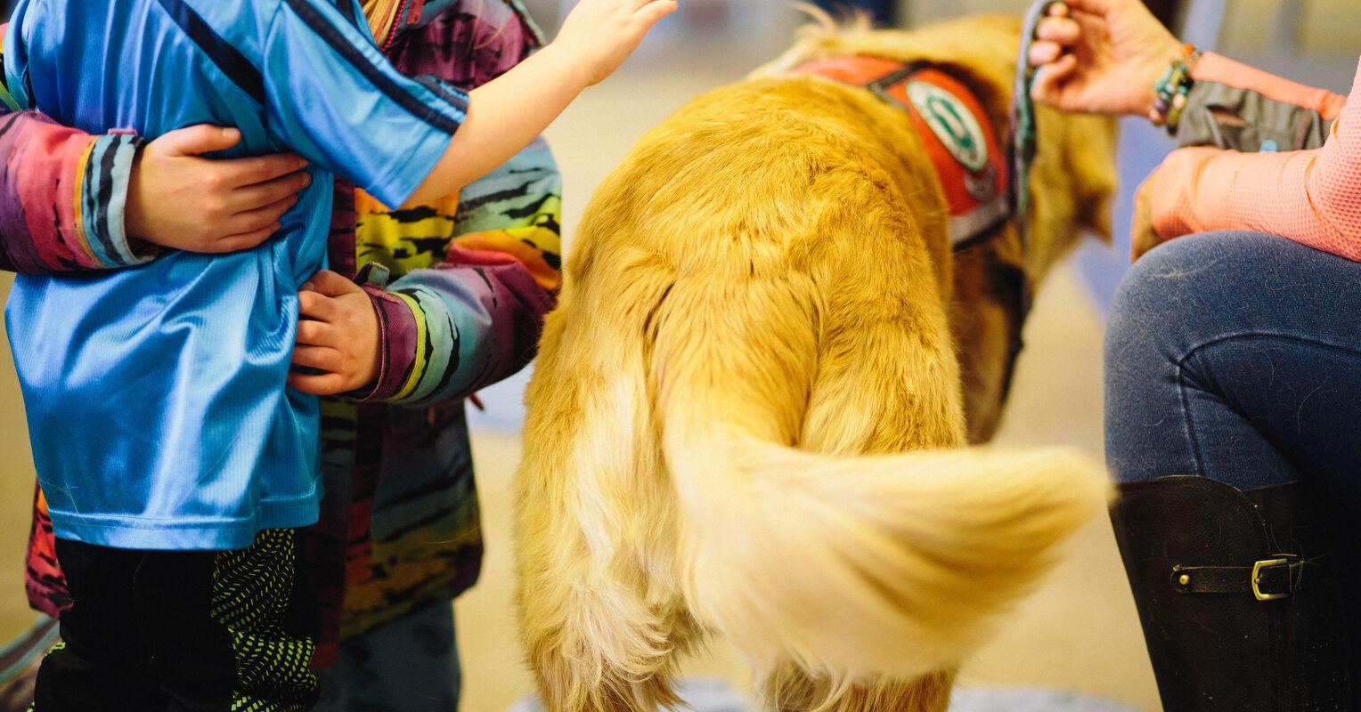 A Kid's Guide to Meeting a New Dog