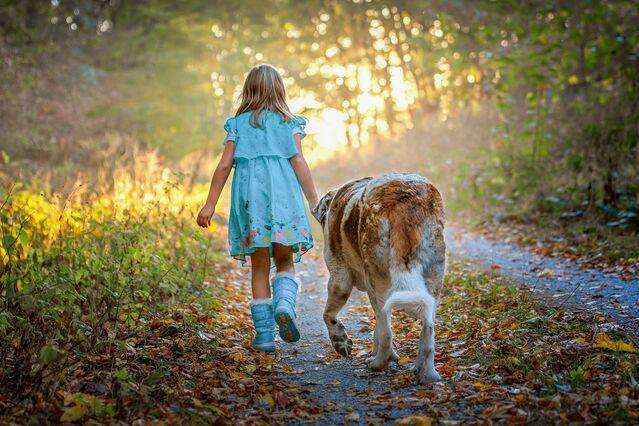 Dogs May Be Good for Your Child's Development